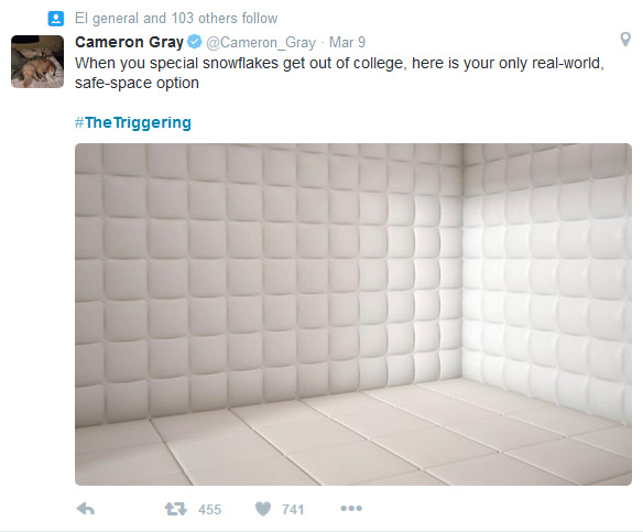 Cam Gray.jpg